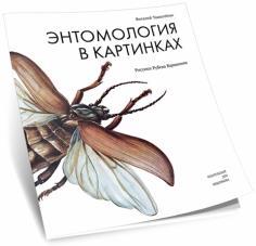 Энтомология в картинках