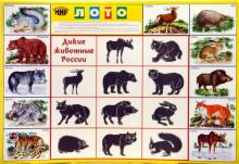 Лото: Дикие животные России 685 (350х500)