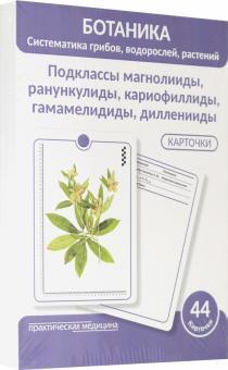Ботаника. Систематика грибов, водорослей, растений. Подклассы магнолииды, ранункулиды. 44 карточки - Луферов, Анцышкина, Простодушева