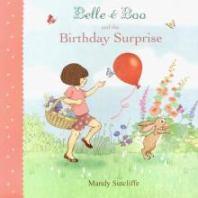 Belle & Boo and the Birthday Surprise - Gillian Shields