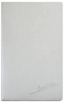 """Ежедневник недатированный """"Наппа"""" (А5, 96 листов, стальной, синие страницы) (47469)"""