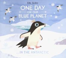 One Day On Our Blue Planet: In The Antarctic - Ella Bailey
