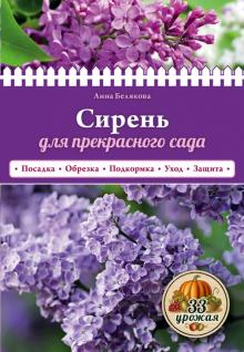 Сирень для прекрасного сада - Анна Белякова