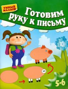 Готовим руку к письму - Гаврина, Топоркова, Кутявина