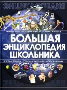 Большая энциклопедия школьника - Анна Спектор