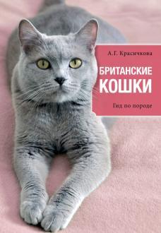 Груминг британской кошки: уход за шерстью, стрижка и купание ... | 330x228