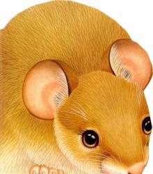 Про мышку. Зверята - В. Комаров