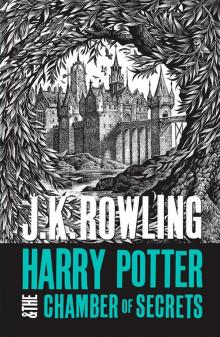 Harry Potter 2: Chamber of Secrets (new adult) - Joanne Rowling